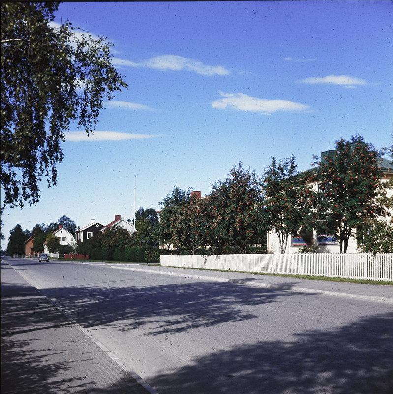 FGÖ_1686-49.jpg